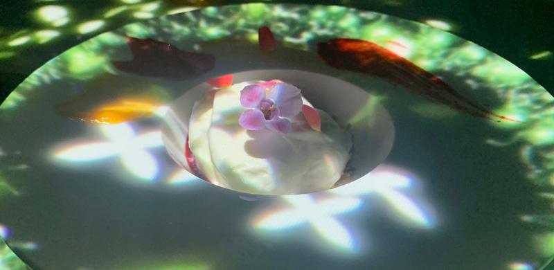 花のダンスと共に現れるクレームダンジュ